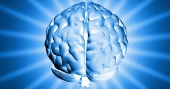 shiny-brain-1150907-1279x1065