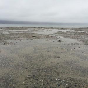 Lake in rain1