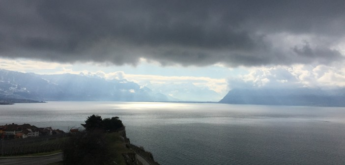 Lavaux in the rain